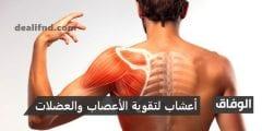 أعشاب لتقوية الأعصاب والعضلات