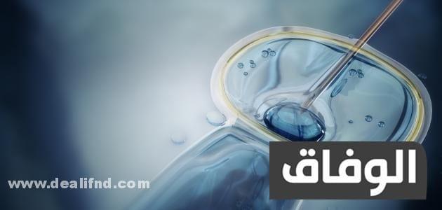 تكلفة الحقن المجهري في مصر دار الطب