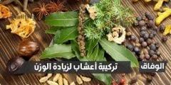 تركيبة أعشاب لزيادة الوزن